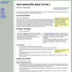 Leonico pearltrees for Soigner amaryllis