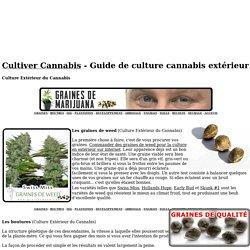 Guide de culture cannabis en extérieur