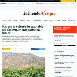Maroc: la culture du cannabis est-elle (vraiment) partie en fumée?