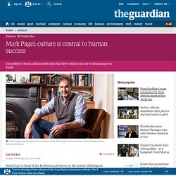 Mark Pagel: culture is central to human success | Technology | The Observer