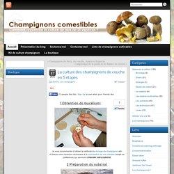 La culture des champignons de couche ou champignon de Paris