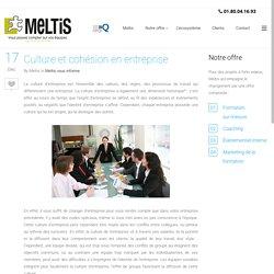 Culture et cohésion en entreprise -