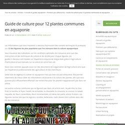 Guide de culture pour 12 plantes communes en aquaponie - Aquaponie