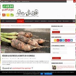 Culture de la carotte:10 conseils pratiques !