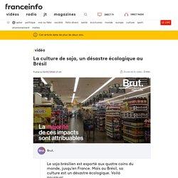 BRUT 02/01/20 VIDEO. La culture de soja, un désastre écologique au Brésil