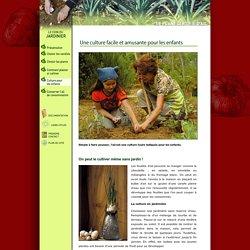 L'ail, une culture facile pour les enfants avec les plants certifiés