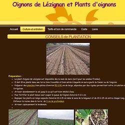 Culture et entretien - Oignons et plants d'oignon de Lezignan