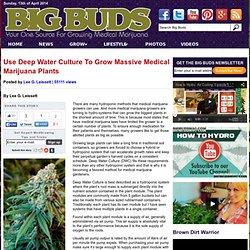 Use Deep Water Culture To Grow Massive Medical Marijuana Plants