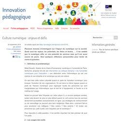 Culture numérique : enjeux et défis
