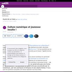 Culture numérique et jeunesse inculte !