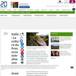 Italie : La culture du Prosecco entraîne une grave érosion des sols - 20minutes