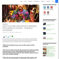 Why Culture and Society Banned Psychedelic Plants – Terence McKenna