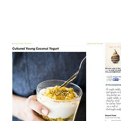Cultured Young Coconut Yogurt