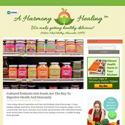 Cultured Probiotic-rich Foods Are The Key To Digestive Health And Immunity — A Harmony Healing