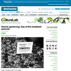 CultureLab: Atomic gardening: Day of the irradiated peanuts