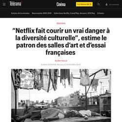 """""""Netflix fait courir un vrai danger à la diversité culturelle"""", estime le patron des salles d'art et d'essai françaises - Cinéma"""