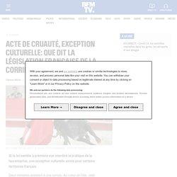 Acte de cruauté, exception culturelle: que dit la législation française de la corrida?