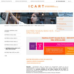 Master Médiation Culturelle et Marché de l'Art - MBA Spécialisés ICART