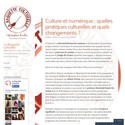 Culture et numérique : quelles pratiques culturelles et quels changements ?