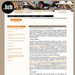 Le succès du .CAT ouvre la voie aux projets d'extensions culturelles et linguistiques - Point BZH - Pour une extension en nom de domaine .bzh