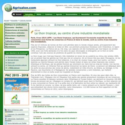 AFP 09/11/14 Pêche - Le thon tropical, au centre d'une industrie mondialisée