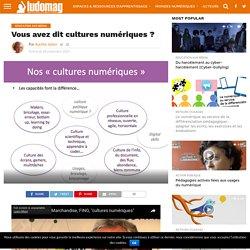 Vous avez dit cultures numériques ? – Ludovia Magazine