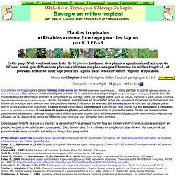 Elevage du lapin en Afrique - Liste de 80 Plantes fourragères tropicales
