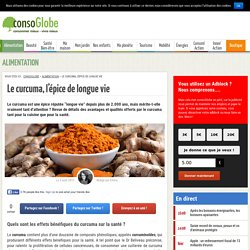 Curcuma : tout savoir sur cette épice longue vie
