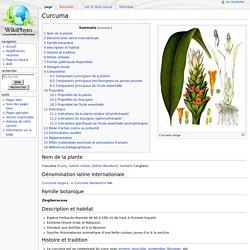 Curcuma — WikiPhyto