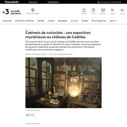 Cabinets de curiosités : une exposition mystérieuse au château de Cadillac