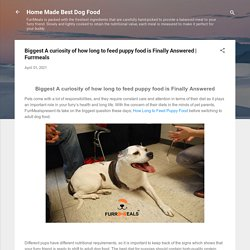 Biggest A curiosity of how long to feed puppy food is Finally Answered
