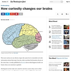 How curiosity changes our brains