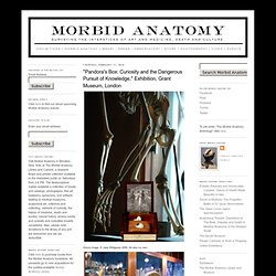 "Morbid Anatomy: ""Pandora's Box: Curiosity and the Dangerous Pursuit of Knowledge,"" Exhibition, Grant Museum, London"