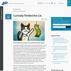 Curiosity Thrilled the Cat - AEI