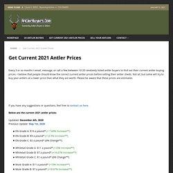 Get Current 2020 Antler Prices - AntlerBuyers.Com