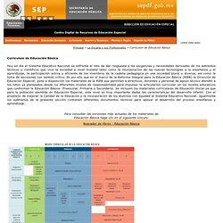 Currículum de Educación Básica