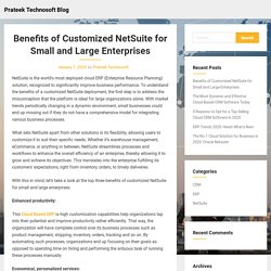 Benefits of Customized NetSuite for Small and Large Enterprises – Prateek Technosoft Blog