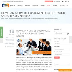 How can a CRM be customized to suit your sales team's needs?