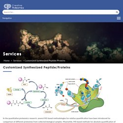 Customized Synthesized Peptide/Proteins
