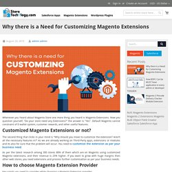 Why there is a Need for Customizing Magento Extensions?