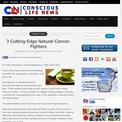 3 Cutting-Edge Natural Cancer-Fighters
