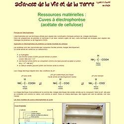 Cuves électrophorèse