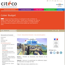 Cyber Budget