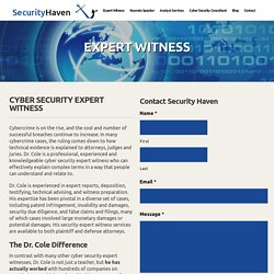 Cyber Security Expert Witness Dr. Eric Cole