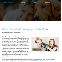 How to Deal with Cyberbullying on Social Media