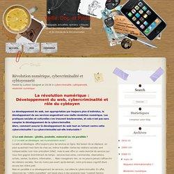 Veille, Doc. et Péda.: Révolution numérique, cybercriminalité et cybtoyenneté