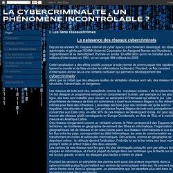 LA CYBERCRIMINALITE , UN PHÉNOMÈNE INCONTRÔLABLE ? : I. Les liens réseaux/crimes