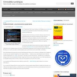 Cybercriminels: une économie souterraine