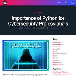 Importance of Python for Cybersecurity Professionals