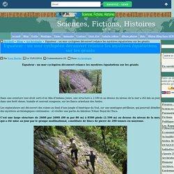 Equateur : un mur cyclopéen découvert relance les mystères équatoriens sur les géants